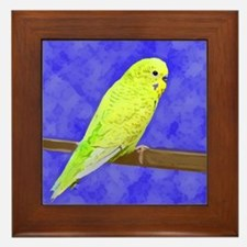 Male Yellow Budgie Framed Tile