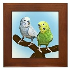 Budgie Pair Framed Tile