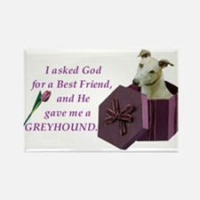 I Asked God -RecMag -Greyhound,Fawn Magnets