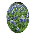 Bluebonnet Ornament (Oval)