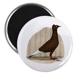 """Flying Flight Red Pigeon 2.25"""" Magnet (100 pa"""