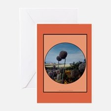 Nature Scene Greeting Cards (Pk of 10)