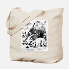 CFZ Bag