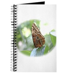 Did someone mention Butterfli Journal