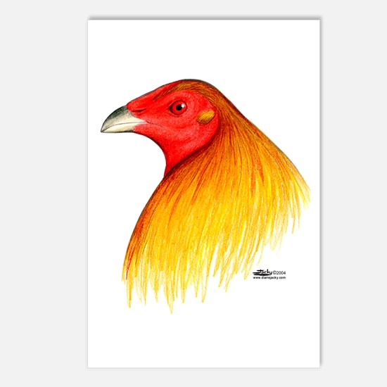 Gamecock Dubbed Postcards (Package of 8)