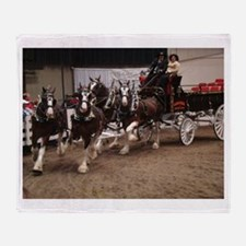 Clydesdale Four-Horse Hitch Throw Blanket
