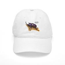 Japanese Rhinoceros Beetle Baseball Cap