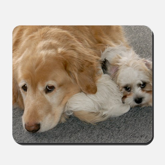 Golden Retriever/Shih Tzu Maltese Mousepad