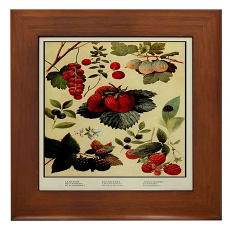Berry Print Framed Tile