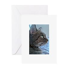 Pensive Kitten Greeting Card