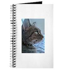 Pensive Kitten Journal