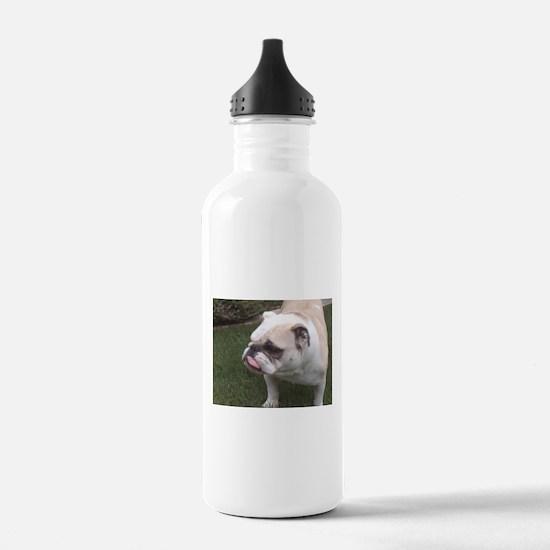 BIrthday Schmirthday Water Bottle