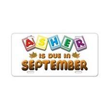 Asher is Due in September Aluminum License Plate