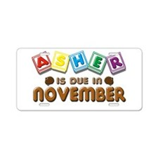 Asher is Due in November Aluminum License Plate