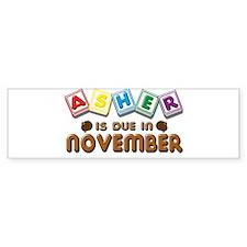 Asher is Due in November Bumper Sticker