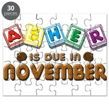Asher is Due in November Puzzle
