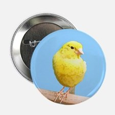 Canary Art Button