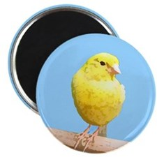 Canary Art Magnet