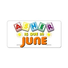 Asher is Due in June Aluminum License Plate