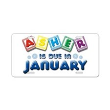 Asher is Due in January Aluminum License Plate