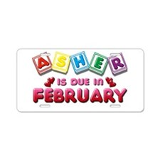 Asher is Due in February Aluminum License Plate
