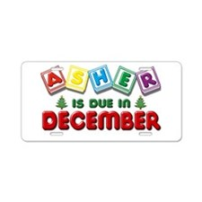 Asher is Due in December Aluminum License Plate