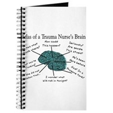 A Nurses's Brain Journal