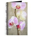Orchid Flowers Journal