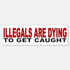 Illegals Dying D25MX2 Bumper Bumper Bumper Sticker