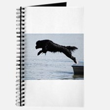 Water Dogs Journal