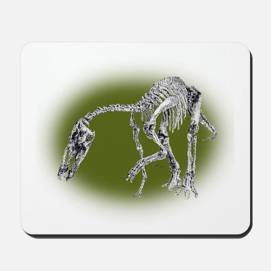 Anatotitan Mousepad