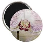 Pink Orchid Petal Magnet