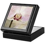 Pink Orchid Petal Keepsake Box