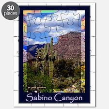 Sabino Canyon Puzzle
