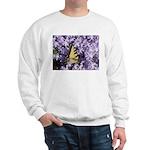 Swallowtail Phlox Sweatshirt