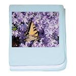 Swallowtail Phlox baby blanket