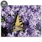 Swallowtail Phlox Puzzle