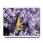 Swallowtail Phlox Mousepad