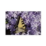 Swallowtail Phlox Rectangle Magnet