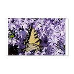 Swallowtail Phlox 22x14 Wall Peel