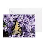 Swallowtail Phlox Greeting Card