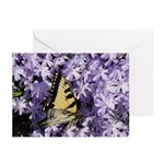 Swallowtail Phlox Greeting Cards (Pk of 10)