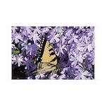 Swallowtail Phlox 38.5 x 24.5 Wall Peel
