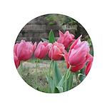 Tulips 3.5