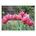 Tulips Small Poster
