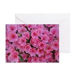 Pink Azaleas Greeting Cards (Pk of 20)