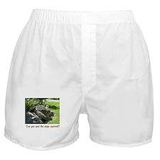 creatures Boxer Shorts