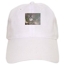 Ferrets Baseball Cap