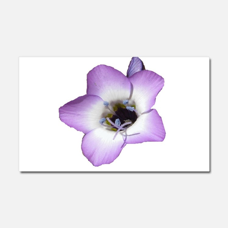 Purple Flower - Car Magnet 20 x 12