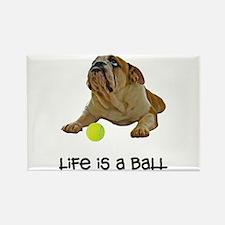 Bulldog Life Rectangle Magnet
